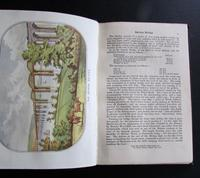 1880 A Week's Holiday in The Forest of Dean.  Rare 1st Edition, Coloured  Plates & Map (3 of 5)
