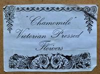 19th Century Victorian Floral Still Life of Pressed Flowers Picture (12 of 12)
