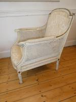 Pair of 19th Century Bergere / Cane Arnchairs (5 of 6)