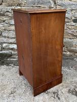 Antique Victorian Mahogany Bedside Pot Cupboard (7 of 16)