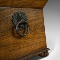 Ornate Antique Tea Caddy, English, Rosewood, Sarcophagus, Chest, Regency c.1820 (2 of 12)