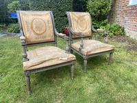 Pair of Directoire Style Armchairs (5 of 6)