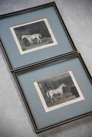 Pair Antique Race Horse Engravings (2 of 11)