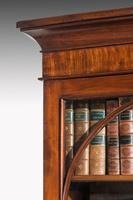 Regency Period Mahogany Bookcase with Gothic Tracery (5 of 6)