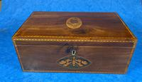 George III Solid Mahogany Box With Wonderful Inlaid Panels (2 of 18)