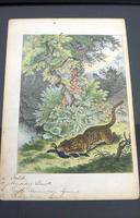 6 Framed Animal Coloured Pictures Plates C1877 Sketches from Nature - N America & Canada (3 of 12)