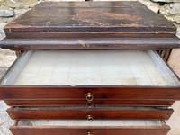 Georgian Collectors Tabletop Specimen Cabinet (22 of 26)