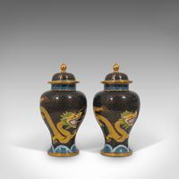 Pair of Antique Decorative Spice Jars, Chinese, Cloisonne, Baluster Urn c.1900 (5 of 12)