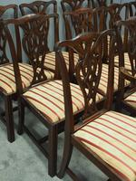 Set of 12 Georgian Style Mahogany Dining Chairs (3 of 12)