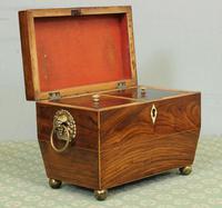 Antique Rosewood Tea Caddy (3 of 15)