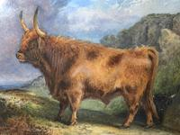 Victorian Scottish Highland Painting of Cattle by Aster Richard Chilton Corbould (10 of 40)