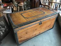 Brass mounted camphor wood  trunk