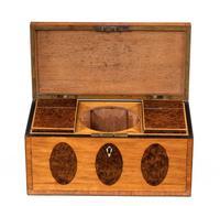 George III Period Satinwood & Burr Yew Tea Caddy (5 of 6)