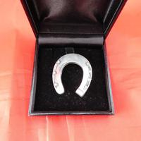 Silver Horseshoe Brooch