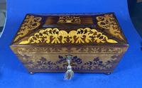 William IV Rosewood Tea Caddy (13 of 13)