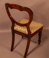 Good Set of 12 Victorian Mahogany Balloon Back Dining Chairs (5 of 9)