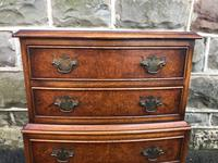 Antique Burr Walnut Chest of Drawers (3 of 8)