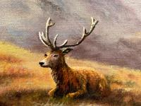 """Oil Painting Scottish Stags """"Denizens of the Highlands"""" Signed Wendy Reeves (7 of 45)"""