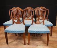 Set 8 Hepplewhite Dining Chairs Mahogany (3 of 7)