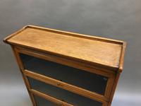Globe Wernicke Type Bookcase (3 of 13)