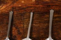 Three Pewter Spoons (2 of 3)