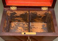 Regency Period Sarcophagus Tea Caddy (6 of 6)