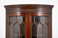 Bow Fronted Double Mahogany Corner Cabinet (4 of 6)