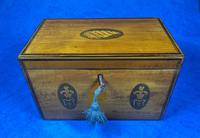 George III Satinwood Twin Tea Caddy with Prince of Wales Inlay (12 of 15)