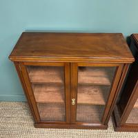 Pair of Victorian Walnut Antique Bookcases (3 of 7)
