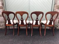 Antique Set of 4 Mahogany Balloon Back Dining Chairs (9 of 11)