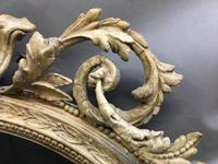 19th Century Ornate Oval Wall Mirror (14 of 16)