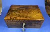 Georgian Brazilian Rosewood Box (10 of 17)