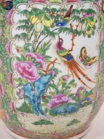Good Large Pair of Chinese Famille Rose Rouleau Vases 19th Century (3 of 11)