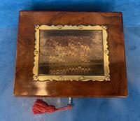 Victorian Walnut Display Box (3 of 11)