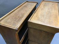 Globe Wernicke Type Bookcase (5 of 13)