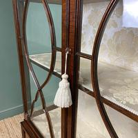 Spectacular Edwardian Chippendale Design Antique Display Cabinet (2 of 9)