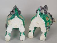 Superb Pair of 19th Century Chinese Porcelain Dogs of Fo Temple Guardians (12 of 12)