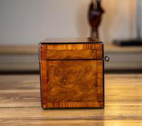 Twin Burr Walnut Tea Caddy 1870 (7 of 9)