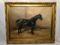 Oil Painting Portrait Study Black Horse in Stable Signed Alice Mary Burton RBA '1893-1968' (4 of 26)