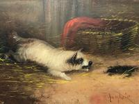 """Pair Victorian 19th Century Sporting Hunting Oil Paintings Terrier Dogs """"Ratting"""" Signed J Langlois (4 of 12)"""