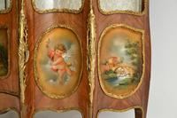 French Ormolu Mounted Display Cabinet (11 of 12)