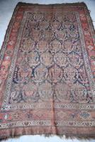 Antique Afshar Rug (7 of 12)