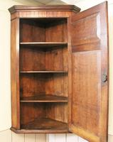 Antique Country Oak panelled Corner Cupboard. Circa 1800 (11 of 12)
