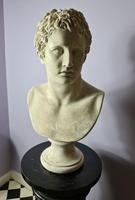 Life Size Plaster Bust of Mark Antony (7 of 7)