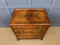 Burr Walnut Chest of Drawers (11 of 13)