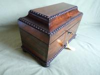 Rosewood Twin Canisters + Bowl Tea Caddy c.1840 (7 of 16)
