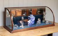 19th Century Counter Top Display Cabinet (3 of 11)