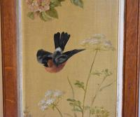 Pair of Oil Paintings of Finches in Blossom (10 of 12)