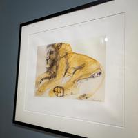 Lithograph of Recumbent Lion (2 of 6)