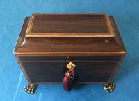 Regency Black Walnut Sarcophagus Twin Section Tea Caddy (4 of 11)